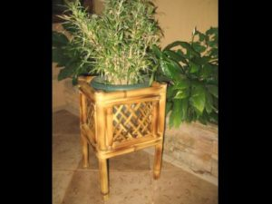 macetero de bambú - bamboo planter