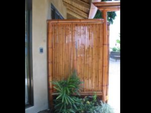 pared de bambú - bamboo wall